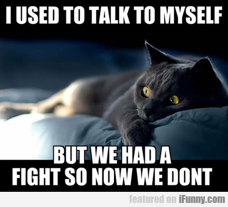 I Used To Talk To Myself But We Had...