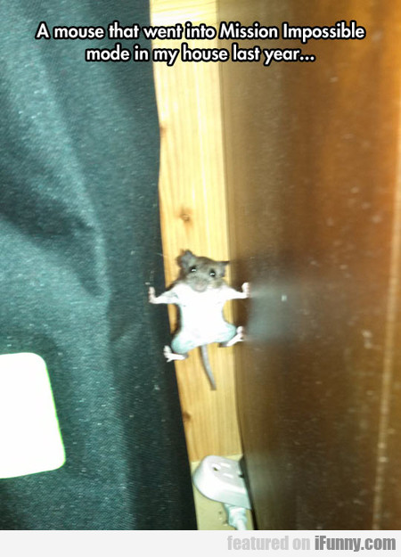 A Mouse That Went Into Mission Impossible Mode