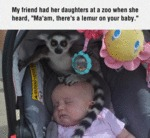My Friend Had Her Daughters At A Zoo When She...