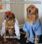 We Examined Your Stool Sample