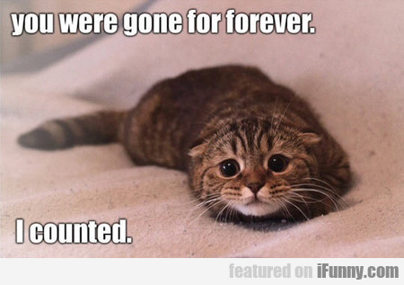 You Were Gone Forever