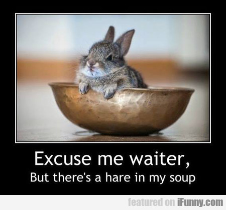 But There's A Hare In My Soup