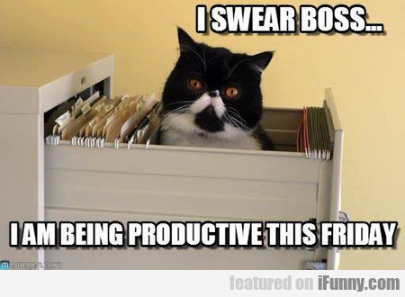 i swear boss... i am being productive this friday