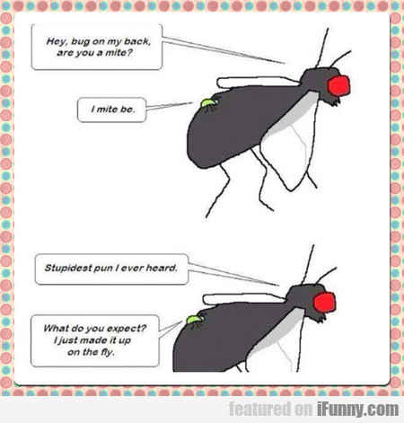 Hey, Bug On My Back, Are You A Mite?