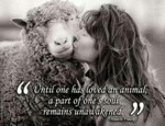 Until One Has Loved An Animal...