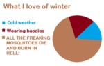 What I Love In Winter