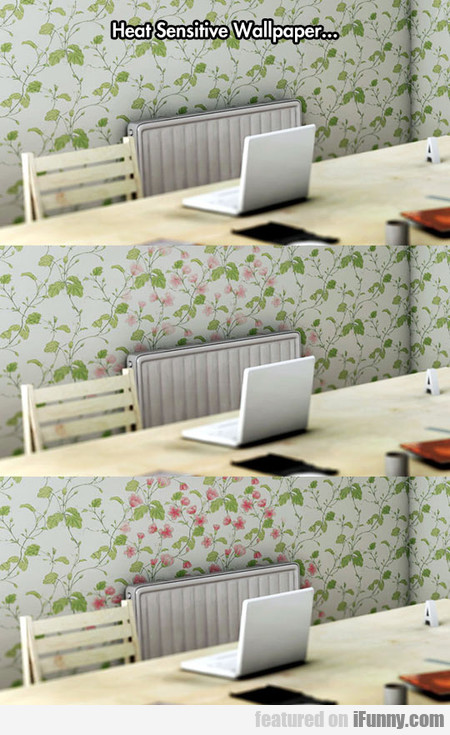 Heat Sensitive Wallpaper