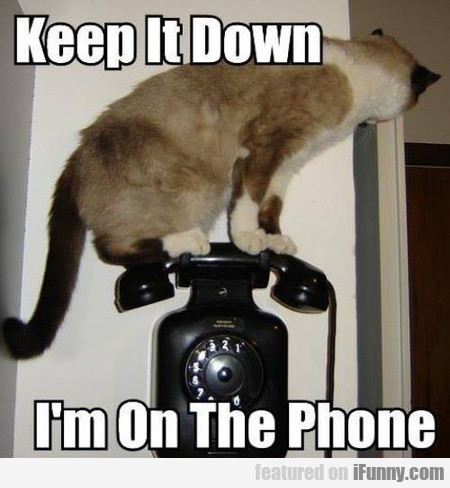 Keep It Down, I'm On The Phone
