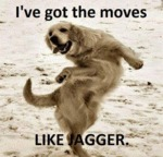 I've Got The Moves
