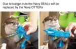 Due To Budget Cuts The Navy Seals Will Be Replaced