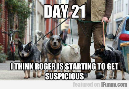 I Think Roger Is Starting To Get Suspicious