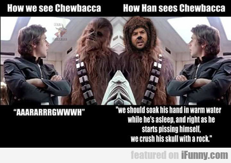 How Han Sees Chewbacca