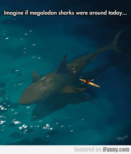 Imagine if megalodon sharks were around today...