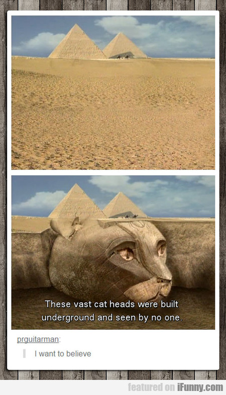 These Vast Cat Heads Were Built Underground