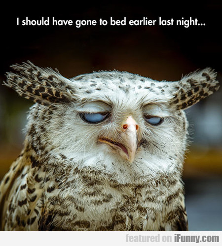 I should have gone to bed earlier last night...
