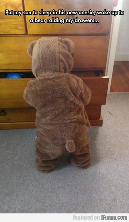 A Bear Was Raiding My Drawers