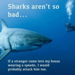 Sharks Are Like Humans
