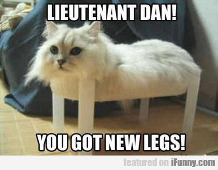 You Got New Legs