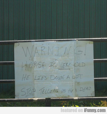 Warning! Horse Is Very Old!