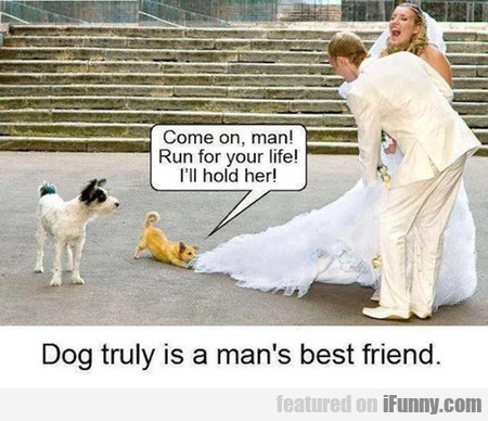 Dog Truly Is A Man's Best Friend.