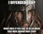I Offended You? What Does It Feel?