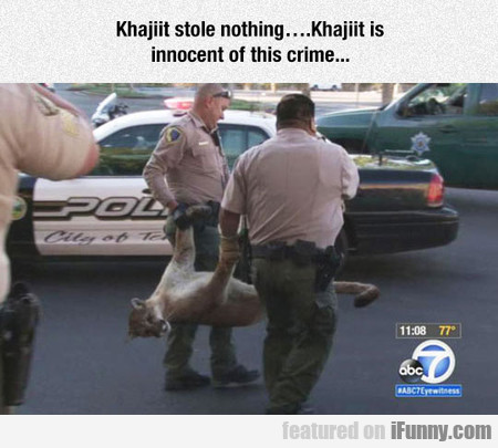 Khajiit Stole Nothing... Khajiit Is Innocent