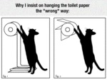 Why I Insist On Hanging The Toilet Paper