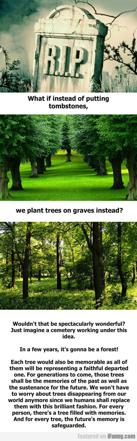 What If We Plant Trees On Graves