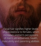 Facial Hair Signifies Higher Levels Of Testosteron