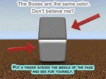 Color Box Optical Illusion
