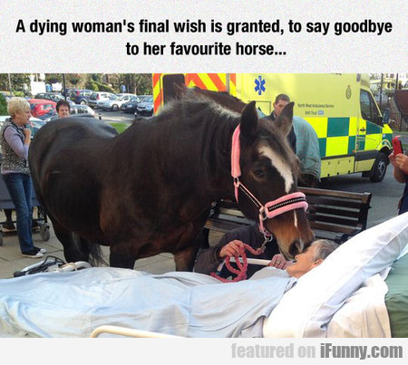 A Dying Woman's Final Wish Is Granted