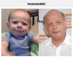 Wallace Shawn Baby