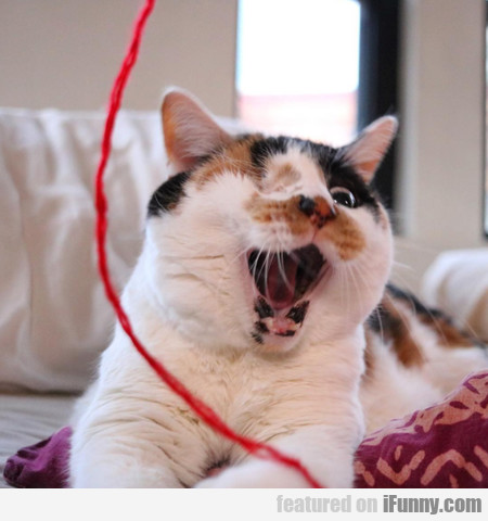 Attack Of The Red String