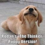 Rodan's The Thinker Puppy Version!
