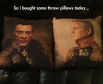 So I Bought Some Throw Pillows Today...
