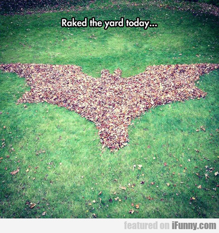 Raked The Yard Today