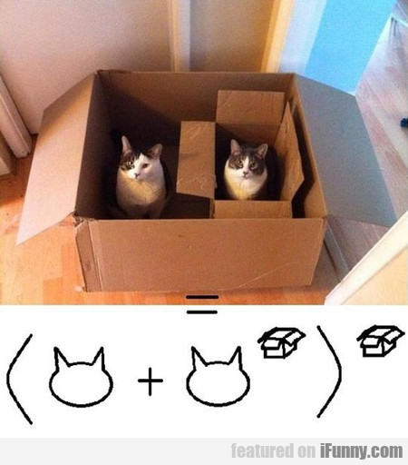 Math Formula Of Cats And Boxes
