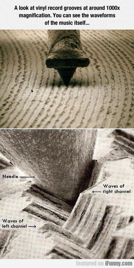 The Waveforms Of The Music Itself