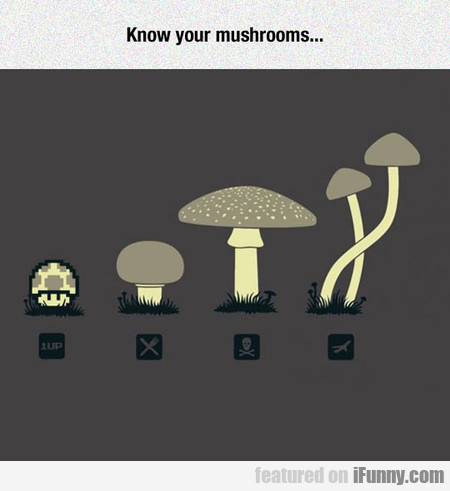 Know Your Mushrooms...