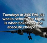 Tuesdays At 3 Pm, Six Weeks Before Your Flight