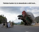 Pakistan Hunters Try To Domesticate A Wild Truck..