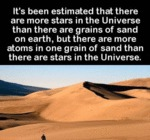 It's Been Estimated That There Are...