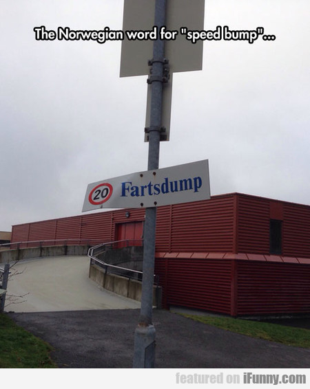 The Norwegian Word For Speed Bump