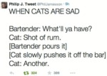 When Cats Are Sad