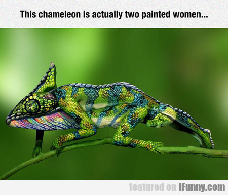 This Chameleon Is Actually Two Painted Women...