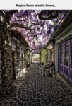 Magical Flower Street In Greece...