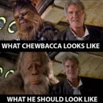 Looks Like Chewbacca Had Some Work Done On Himself