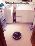 Terrifying Roombas