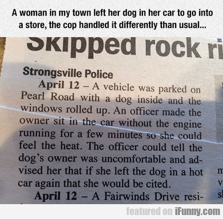 A woman in my town left her dog in her car