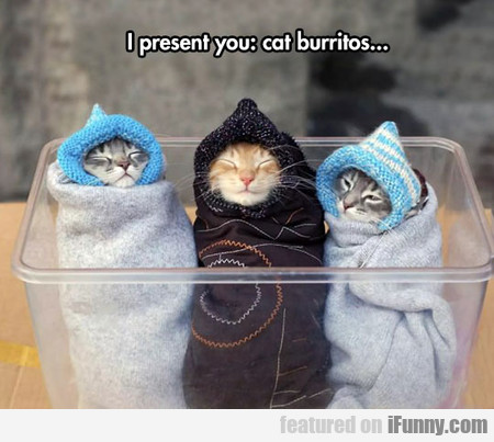 The Beautiful Purritos